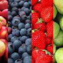4fruits