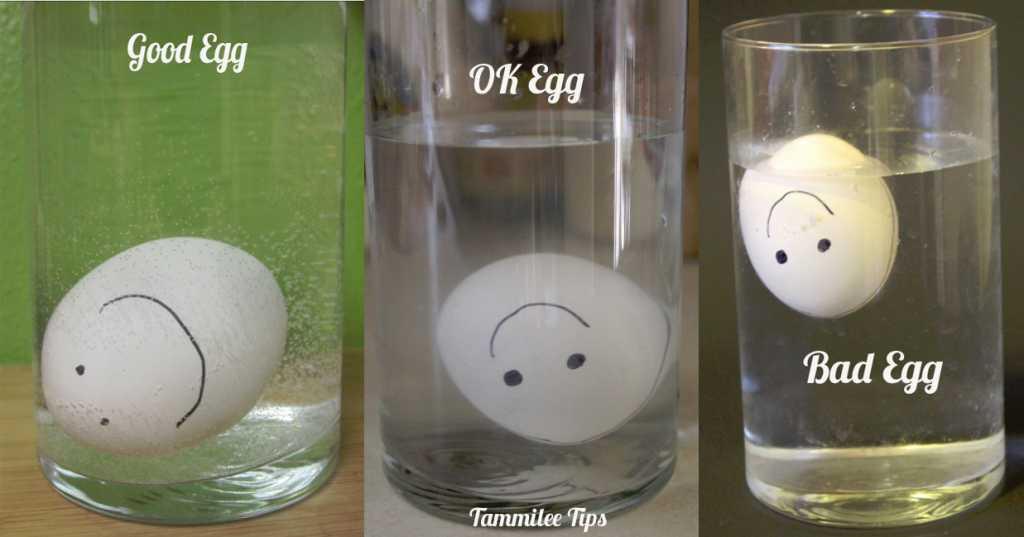 Good-ok-Bad-Egg