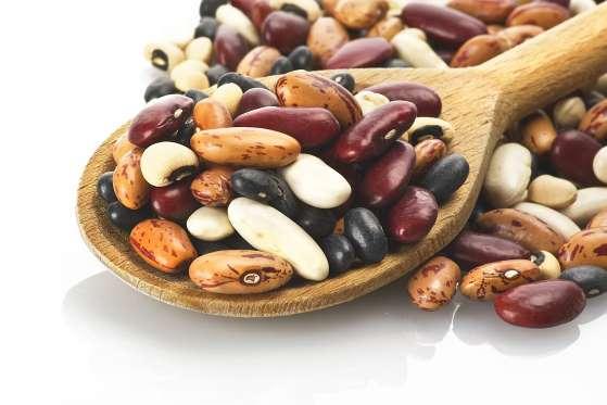 food-storage-tips_bean