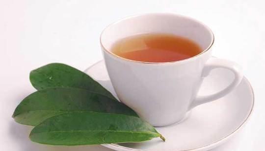 guyabano-tea