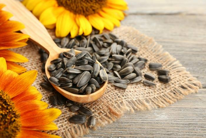 The health benifits of consuming sunflower seeds