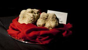 alba-white-truffles
