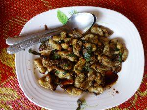 beetle-larvae