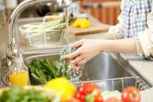 wash-produce
