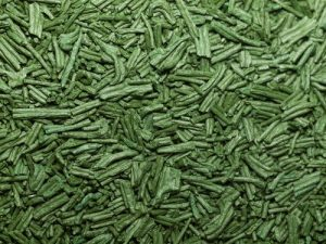 dried-spirulina