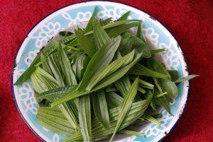 leaf-plantain