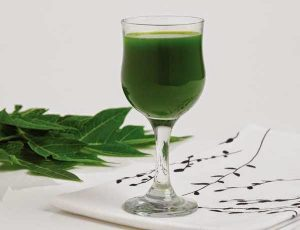 papaya-leaves-juice