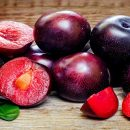 Healing Benefits of Plums