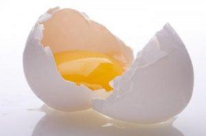 egg-300x199