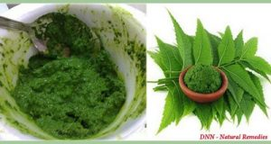 neem-tree-one-of-the-most-beneficial-plants-for-the-human-health-500x267
