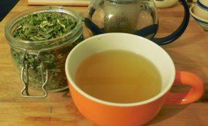 olive-leaf-lefoody-tea