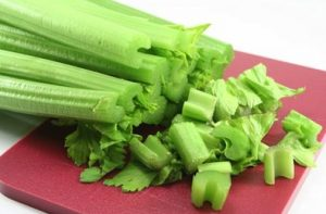 can-dogs-eat-celery-2