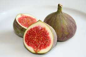 Common-fig