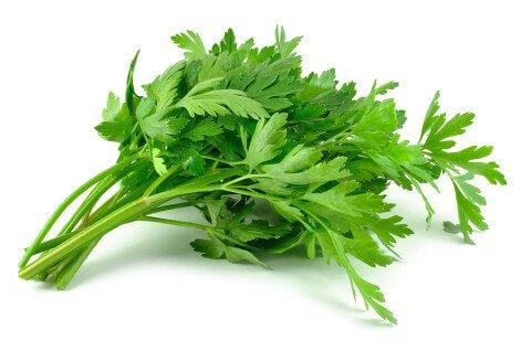 parsley-leaves-480x318
