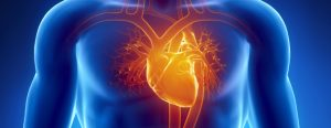 1216-News-Deaths-is-caused-by-cardiovascular-disease_Blog