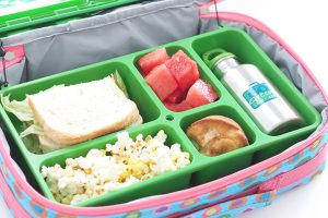 go-green-lunchbox-review-1