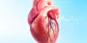 landscape-1445720571-g-heart-disease-168832618