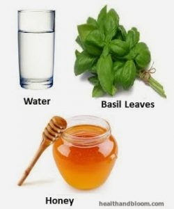 water basil honey