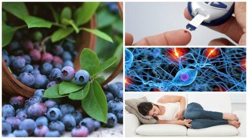 Blueberry သီးရဲ့ က်န္းမာေရး အက်ိဳးေက်းဇူး (၈) မ်ိဳး