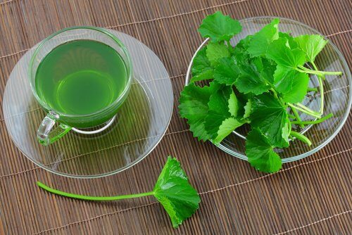 2-parsley-and-mint-tea