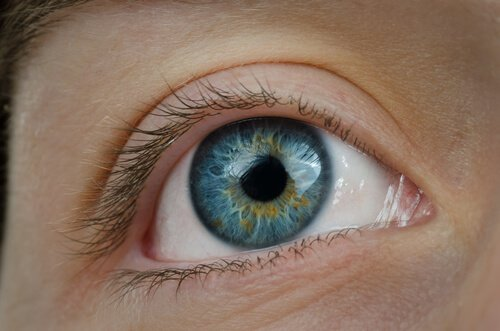 5-visual-health