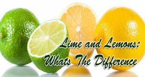 Do-You-Know-The-Difference-Between-Lemon-And-Lime