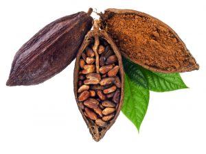 cacao-pod-e1499393197508
