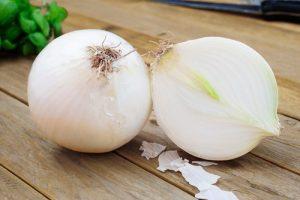 onions1-500x334