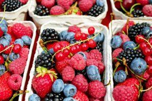 15517010-berries-1546125_960_720-1501602086-650-ded5a0de86-1502794566