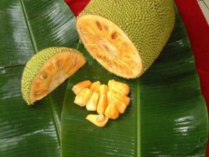 Jackfruit-cut