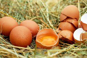 cracked_egg_yolk_eggs_eggshell_farm_fresh_nest_poultry-1091545.jpg!d