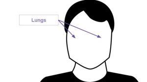 lungs-e1447096462299