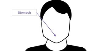 stomach-e1447096513988