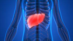 Un-hígado-sano