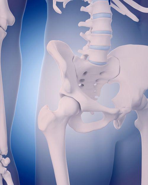 939b17dbdee96a61f0761bdbce979560--bone-density-test-bone-strength