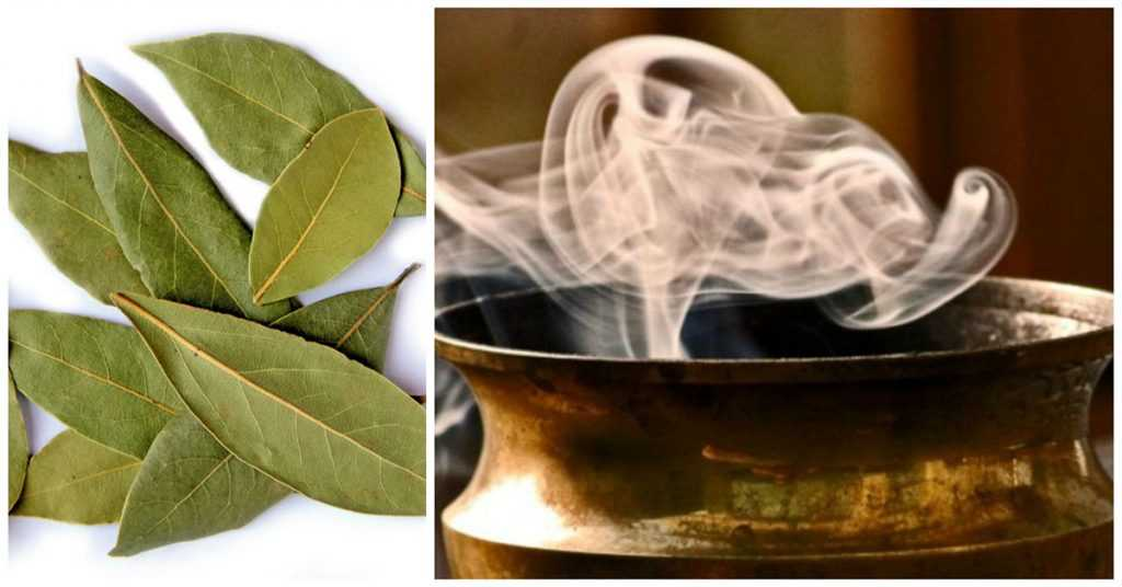 Forget-Incense.-This-Is-Why-You-Should-Burn-Bay-Leaves-In-Your-Home.