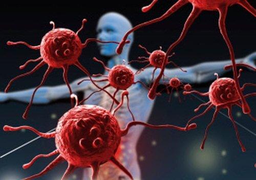 4-blood-cells