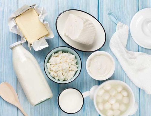 နို့နဲ့ နို့ထွက်ပစ္စည်းများ စားသုံးမှုကို ရပ်တန့်လိုက်ပါက ခန္ဓာကိုယ်က ဘာတွေပြောင်းလဲသွားတတ်သလဲ