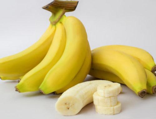 ငှက်ပျောသီးကိုနေ့တိုင်းစားပေးခြင်းကြောင့်ရရှိလာမယ့်ကောင်းကျိုးများ