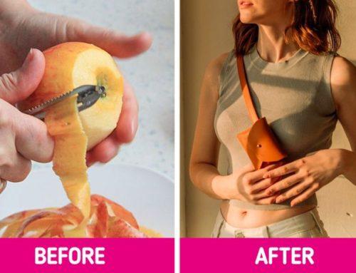 ပန်းသီးအခွံနဲ့ ပြုလုပ်ထားတဲ့ လူ့အသုံးအဆောင်ပစ္စည်းများ