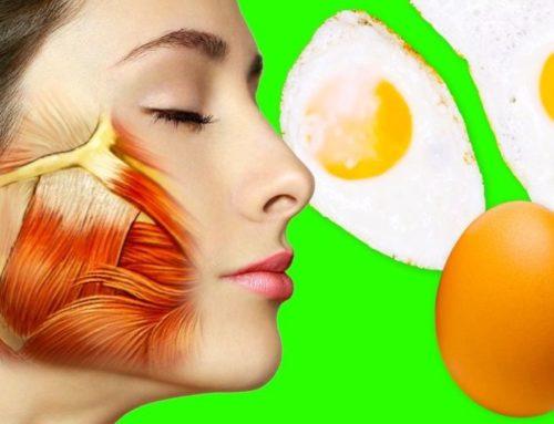 ဒီအစားအစာတွေ စားသုံးခြင်းကြောင့် သင့်ခန္ဓာကိုယ်က သင့်ကို ကျေးဇူးတင်နေမှာပါ